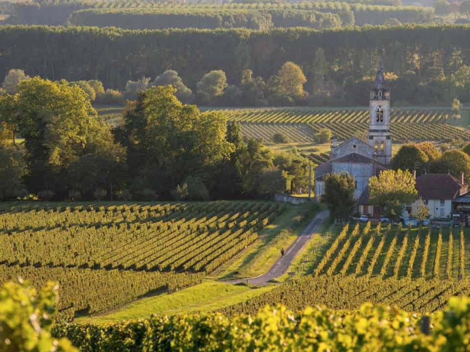 Txi events featured img france